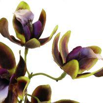 Orchidea Cymbidium Green, Purple L38cm 4pcs