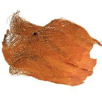 Fibra di palma naturale 1kg