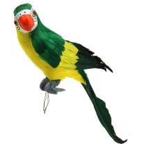 Deco Parrot Green 44cm