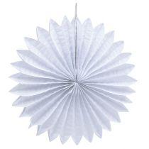 Fiori di carta 25-40 cm 1 set