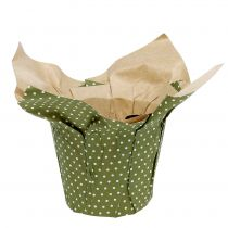 Vaso di carta con motivo verde-bianco Ø9,5 cm 12 pezzi