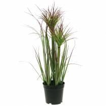 Erba artificiale in vaso Verde, rosso porpora 45 cm