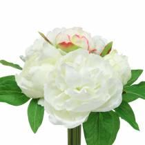Mazzo di peonia bianco / rosa 27 cm 6 pezzi