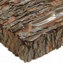 Contenitore per piante corteccia di pino decorazione autunnale sottofondo 35 × 25 cm H6 cm