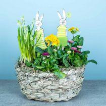 Fioriera in fieno, cesto decorativo, cesto di piante, cesto di fiori ovale, set di 3