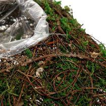 Vite cuscino vegetale, muschio 22 cm x 22 cm H7,5 cm