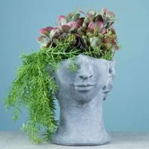 Busto testa di piantagione in cemento per piantare grigio H23,5cm