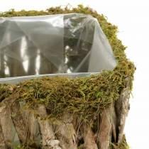 Cesto di piantagione di muschio angolare, corteccia 34 × 15,5 / 24,5 × 11 cm, set di 2