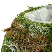 Ciotola per piantare Moss Bowl Ø18cm 2 pezzi