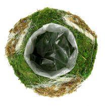 Ciotola per piantare fatta di muschio Ø28cm