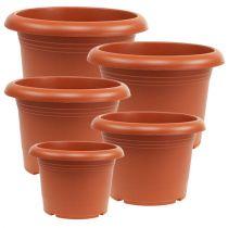 "Vaso per piante ""Oliver"" in terracotta Ø15cm - 45cm, 1pce"