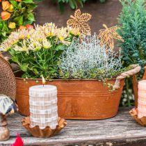 Portavasi con manici, ciotola per erbe, decorazione autunnale, patina L28cm H11cm