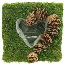 Cuscino per piante cuore muschio e coni quadrati 25 × 25 cm