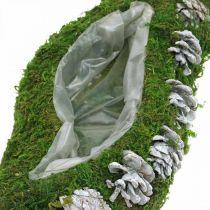 Fioriera muschio e coni verde onda, bianco lavato 41 × 15 cm