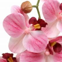 Ramo di orchidea artificiale Phaelaenopsis rosa H49cm