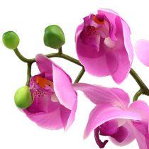 Orchidea Phalaenopsis Pink 77cm