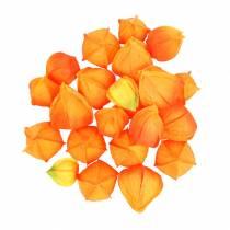Physalis Orange Assorted 22pcs calici artificiali