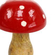 Fungo in legno rosso 15,5 cm