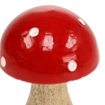 Fungo in legno rosso 11,5 cm