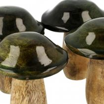 Fungo legno di mango verde decorazione da tavola autunno Ø7cm H9cm 4 pezzi