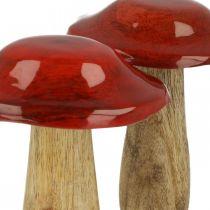 Fungo legno di mango rosso, decorazione della natura autunno Ø9cm H12cm 2 pezzi