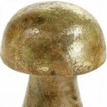 Fungo legno di mango oro, fungo decorativo naturale Ø6cm H10cm 4 pezzi