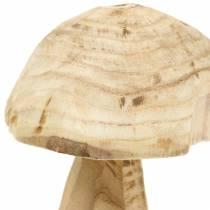 Fungo legno di paulonia Ø16cm H18cm