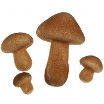 Mix di funghi marrone chiaro 2 cm - 8 cm 12 pezzi