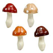 Funghi ordinati 3 cm x 5 cm su filo 48 pezzi