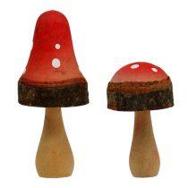 Mix di funghi in legno 5,5 cm - 8 cm 8 pezzi