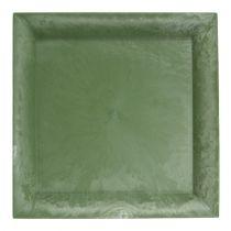 Piatto di plastica quadrato verde 19,5 cm x 19,5 cm