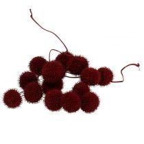 Frutti piani essiccati rosso scuro 250g