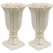 Anfora decorativa, calice per piantare, calice per piantagione di tulipani Ø12cm H25,5cm 2 pezzi