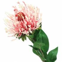 Protea rosa artificiale 73cm