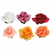 Schiuma-Rosa Ø4,5cm diversi colori 36 pezzi