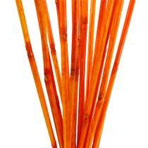 Steli in rattan arancione 100 cm 20 pezzi.