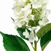 Ortensia pannocchia bianco crema, ortensia artificiale, fiore di seta 98 cm