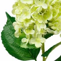 Ortensia a pannocchia artificiale, ortensia verde, fiore di seta di alta qualità 98 cm