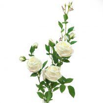 Crema di rami di rosa / rosè 100cm