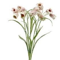 Chessflower bianco-rosa nevicato L45cm 6 pezzi