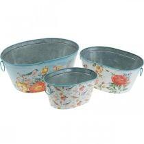 Ciotole per piante, primavera, fioriera / uccelli, contenitore in metallo ovale L39 / 31 / 24,5 cm set di 3