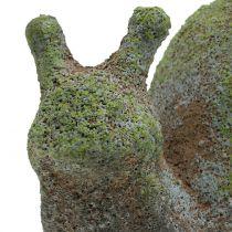 Lumaca figura giardino muschio 31 cm x 17 cm H17 cm