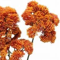 Sedum artificiale sedum arancione decorazione autunnale 70 cm 3 pezzi