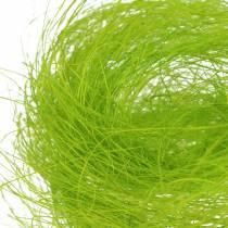 Sisal erba decorativa verde primavera 500g