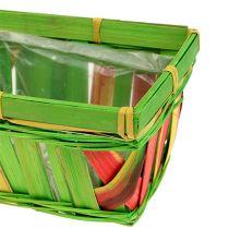 Sculacciata quadrata angolare multicolore 15 cm 12 pezzi