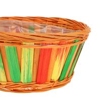 Truciolare tondo multicolore 12 pezzi Ø 20 cm