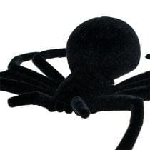 Spider Black 16cm floccato