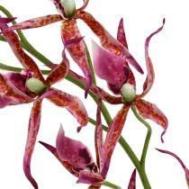 Orchidee ragno rosa-arancio 108 cm 3 pezzi