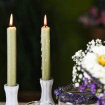Candela conica candele di cera di colore verde 180mm / Ø21mm 6 pezzi