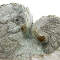 Spina a forma di cuore a conchiglia 15 cm x 13 cm H8 cm